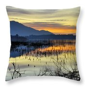 Calm At The Lake Throw Pillow