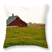 Calm Of The Morning Throw Pillow