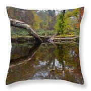 Calm On Big Chico Creek Throw Pillow