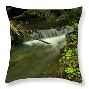 Calm Rapids Throw Pillow