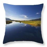 Calm River Throw Pillow