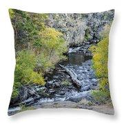 Calming Stream Throw Pillow