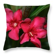 Calpoly Flowers By Diana Sainz Throw Pillow