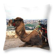 Camel And Jerusalem From Mount Olive Throw Pillow by Thomas R Fletcher