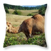 Camel In The Berry Bush Throw Pillow