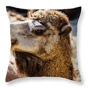 Camel Loose Lip Throw Pillow
