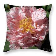 Camellia 2967 Throw Pillow