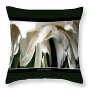 Camellia Abstract Throw Pillow