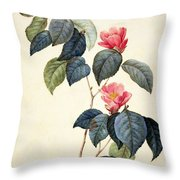 Camellia Japonica Throw Pillow by Pierre Joseph Redoute