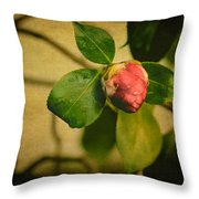 Camellia Throw Pillow by Marco Oliveira