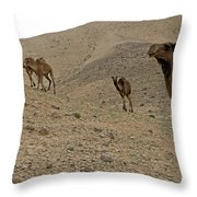 Camels At The Israel Desert -2 Throw Pillow