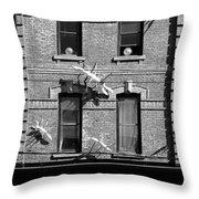 Cameron House 2b Throw Pillow