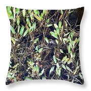 Camouflage Frog Throw Pillow