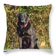 Camouflage Labrador - Black Dog - Retriever Throw Pillow