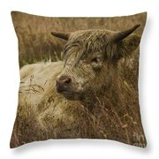 Camouflaged Cow Throw Pillow