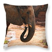 Camouflaged Elephant Throw Pillow