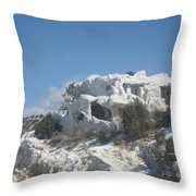 Camouflaged Home Throw Pillow