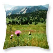 Chautauqua Wildflowers Boulder Throw Pillow