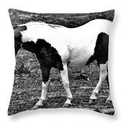 Camp Horse Throw Pillow