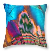 Campari 13 Throw Pillow
