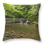 Campbell Falls 6 Throw Pillow