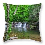 Campbell Falls Throw Pillow
