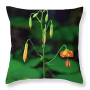 Campground Flower Throw Pillow