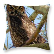 Campus Owl Throw Pillow