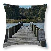 Can Gulls Read Throw Pillow