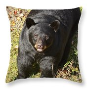 Can I Come Up? Throw Pillow