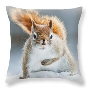 Can I Have Some More? Throw Pillow