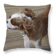 Can You Feel The Sea Breeze Throw Pillow
