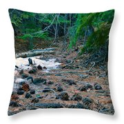 Can You Find It Throw Pillow