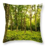 Canaan Path Throw Pillow