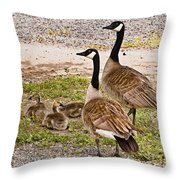 Canada Geese And Goslings Throw Pillow