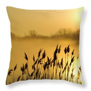 Canada Geese In Flight At Sunrise Throw Pillow