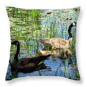 Canada Geese On Lily Pond At Reinstein Woods Throw Pillow
