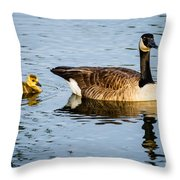 Canada Goose And Gosling Throw Pillow