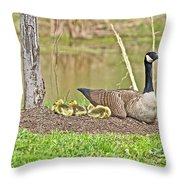 Canada Goose And Goslings Throw Pillow
