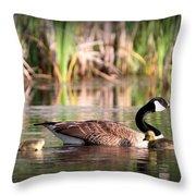 Canada Goose - Babies  8237-16x10 Throw Pillow