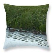Canada Goose Family   #7478 Throw Pillow