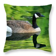 Canada Goose On Green Pond Throw Pillow