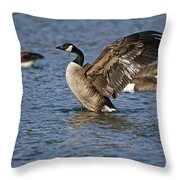Canada Goose Pictures 165 Throw Pillow