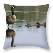 Canada Goose Pictures 172 Throw Pillow