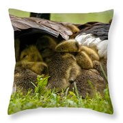 Canada Goose Pictures 189 Throw Pillow