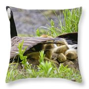 Canada Goose Pictures 192 Throw Pillow