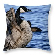 Canada Goose Pictures 84 Throw Pillow