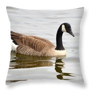 Canada Goose Reflecting In Calm Waters Throw Pillow