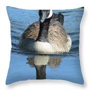 Canada Goose Reflecting Throw Pillow