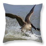 Canada Goose Touchdown Throw Pillow